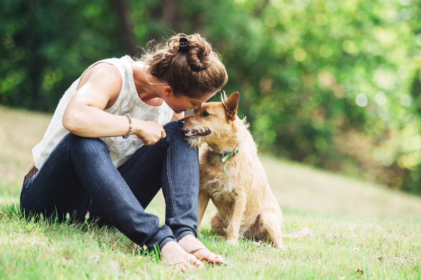 A mature Caucasian woman has relaxing fun playing with her dog in a beautiful park setting.  She lovingly talks to him with a smile on her face.  They rest in the grass, the woman arm over the dog.  Horizontal image with copy space.
